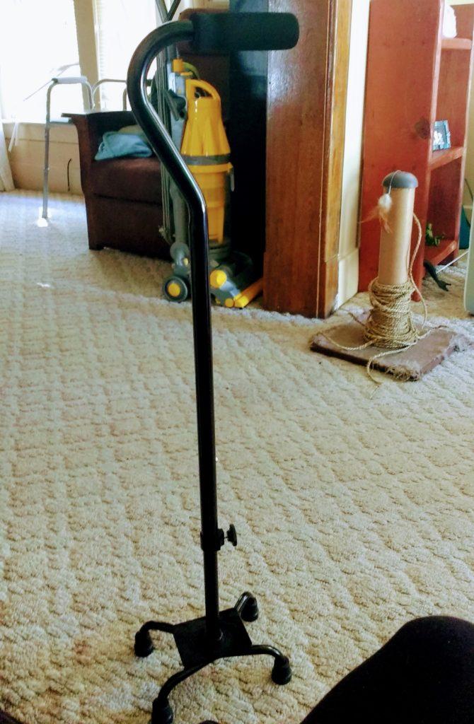 black cane