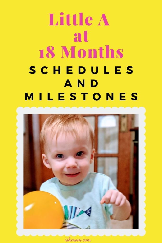 schedule and milestones of 18 month old