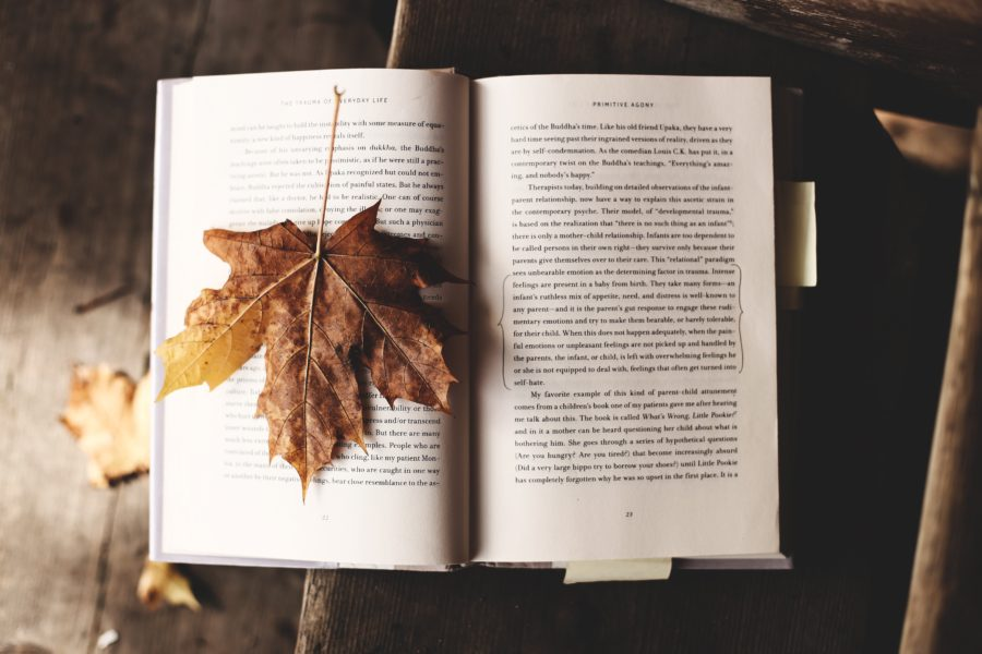 fall leaf on book