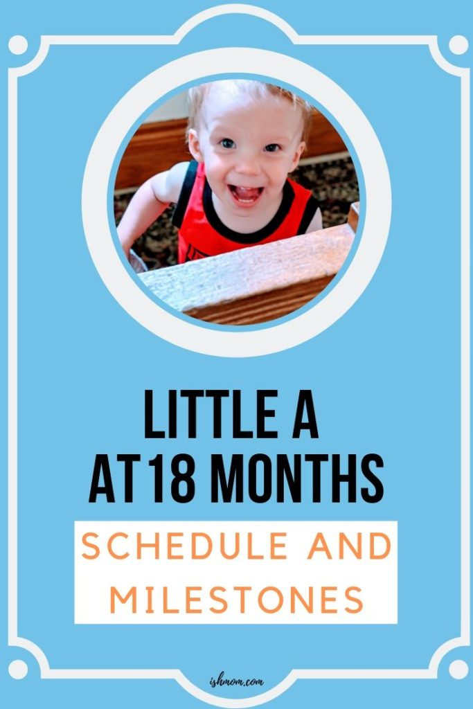 little a at 18 months schedule and milestones