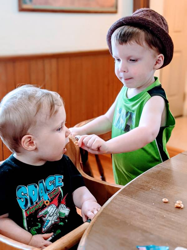 toddler boy helping feed his baby brother